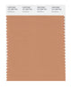 Pantone SMART Color Swatch 16-1328 TCX Sandstone