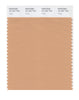 Pantone SMART Color Swatch 16-1331 TCX Toast