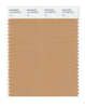 Pantone SMART Color Swatch 16-1333 TCX Doe