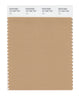 Pantone SMART Color Swatch 16-1334 TCX Tan