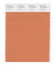 Pantone SMART Color Swatch 16-1337 TCX Coral Gold