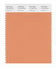 Pantone SMART Color Swatch 16-1338 TCX Copper Tan