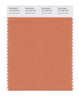 Pantone SMART Color Swatch 16-1340 TCX Brandied Melon