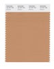 Pantone SMART Color Swatch 16-1341 TCX Butterum