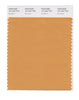 Pantone SMART Color Swatch 16-1342 TCX Buckskin