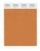 Pantone SMART Color Swatch 16-1346 TCX Golden Ochre