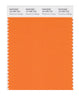 Pantone SMART Color Swatch 16-1356 TCX Persimmon Orange
