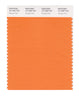 Pantone SMART Color Swatch 16-1359 TCX Orange Peel
