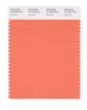 Pantone SMART Color Swatch 16-1360 TCX Nectarine