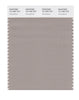 Pantone SMART Color Swatch 16-1406 TCX Atmosphere