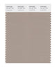 Pantone SMART Color Swatch 16-1407 TCX Cobblestone