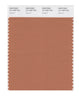 Pantone SMART Color Swatch 16-1429 TCX Sunburn