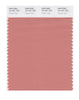 Pantone SMART Color Swatch 16-1431 TCX Canyon Clay