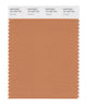 Pantone SMART Color Swatch 16-1439 TCX Caramel