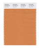 Pantone SMART Color Swatch 16-1443 TCX Apricot Buff