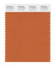 Pantone SMART Color Swatch 16-1448 TCX Burnt Orange
