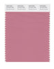 Pantone SMART Color Swatch 16-1610 TCX Brandied Apricot