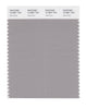 Pantone SMART Color Swatch 16-3801 TCX Opal Gray