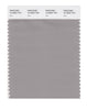Pantone SMART Color Swatch 16-3802 TCX Ash