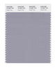 Pantone SMART Color Swatch 16-3907 TCX Dapple Gray