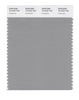 Pantone SMART Color Swatch 16-4702 TCX Limestone