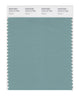 Pantone SMART Color Swatch 16-5112 TCX Canton