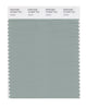Pantone SMART Color Swatch 16-5304 TCX Jadeite