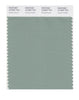 Pantone SMART Color Swatch 16-5907 TCX Granite Green