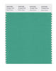 Pantone SMART Color Swatch 16-5924 TCX Winter Green