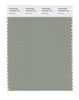 Pantone SMART Color Swatch 16-6008 TCX Seagrass
