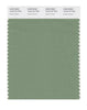 Pantone SMART Color Swatch 16-6116 TCX Shale Green