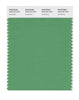 Pantone SMART Color Swatch 16-6127 TCX Greenbriar