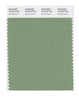 Pantone SMART Color Swatch 16-6318 TCX Mineral Green
