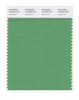 Pantone SMART Color Swatch 16-6329 TCX Peppermint
