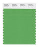 Pantone SMART Color Swatch 16-6339 TCX Vibrant Green