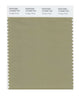 Pantone SMART Color Swatch 16-0205 TCX Vintage Khaki