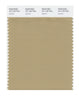 Pantone SMART Color Swatch 16-1120 TCX Starfish