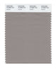 Pantone SMART Color Swatch 16-3800 TCX Satellite
