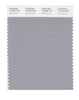 Pantone SMART Color Swatch 16-3850 TCX Silver Sconce