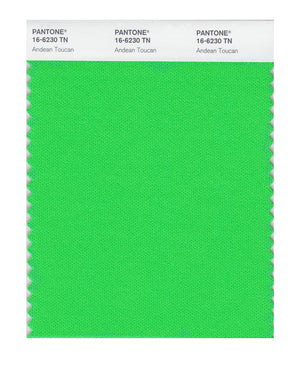 Pantone Nylon Brights Color Swatch 16-6230 TN Andean Toucan