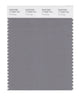 Pantone SMART Color Swatch 17-0000 TCX Frost Gray