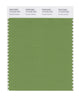 Pantone SMART Color Swatch 17-0133 TCX Fluorite Green