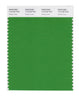 Pantone SMART Color Swatch 17-0145 TCX Online Lime