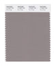 Pantone SMART Color Swatch 17-0207 TCX Rock Ridge