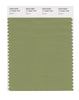Pantone SMART Color Swatch 17-0324 TCX Epsom