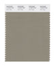 Pantone SMART Color Swatch 17-0510 TCX Silver Sage
