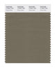 Pantone SMART Color Swatch 17-0517 TCX Dusky Green