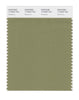 Pantone SMART Color Swatch 17-0525 TCX Mosstone