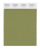Pantone SMART Color Swatch 17-0535 TCX Green Olive