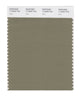 Pantone SMART Color Swatch 17-0620 TCX Aloe